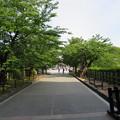 Photos: 金沢城(石川県営 金沢城公園)石川門