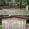 加賀藩前田家墓所(金沢市 野田山墓地)12代斉広継室 鷹司隆子墓