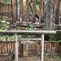 加賀藩前田家墓所(金沢市 野田山墓地)12代斉広5女 前田タカ子墓
