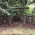 Photos: 加賀藩前田家墓所(金沢市 野田山墓地)9代前田重靖墓