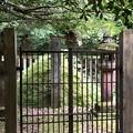 加賀藩前田家墓所(金沢市 野田山墓地)14代慶寧継室 通子墓