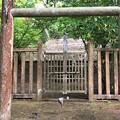 Photos: 加賀藩前田家墓所(金沢市 野田山墓地)2代前田利長墓