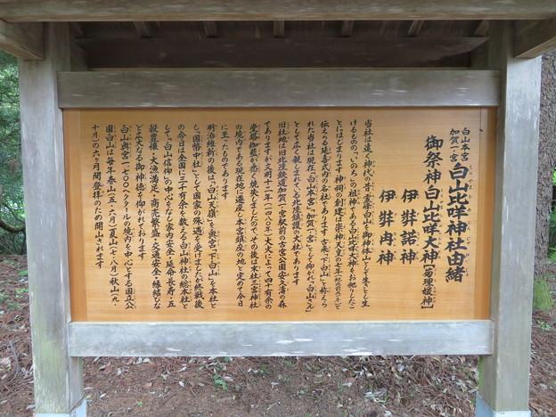 白山比咩神社(白山市)