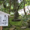 Photos: 白山比咩神社(白山市)芭蕉句碑