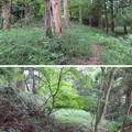 Photos: 大聖寺城(石川県加賀市)鐘が丸武者溜り?
