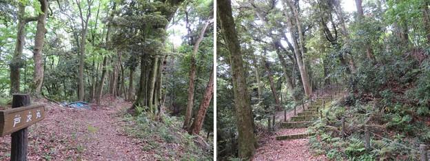 大聖寺城(石川県加賀市)戸次丸・二の丸分岐
