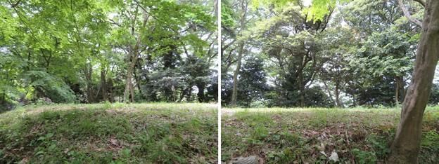 大聖寺城(石川県加賀市)本丸櫓台