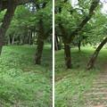 大聖寺城(石川県加賀市)馬出