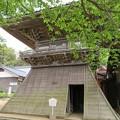 Photos: 真宗大谷派 吉崎別院(東別院。福井県あわら市)鐘楼