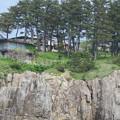Photos: 東尋坊観光遊覧船(福井県坂井市)
