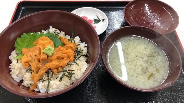 Photos: 千舟(坂井市)