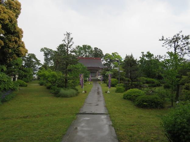 称念寺(坂井市丸岡町)境内