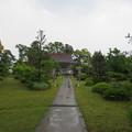 Photos: 称念寺(坂井市丸岡町)境内