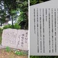 称念寺(坂井市丸岡町)明智光秀と黒髪伝説・松尾芭蕉句碑