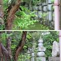 高岳寺(坂井市)肥前有馬氏宗家墓所