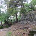 丸岡城(福井県坂井市)天守台石垣