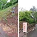 Photos: 白山平泉寺旧境内(勝山市)東尋坊屋敷跡