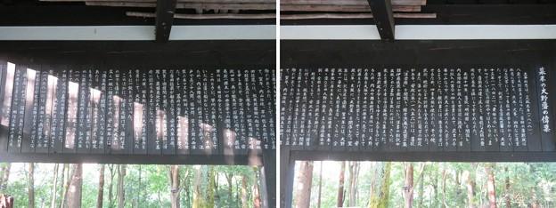 大野城/亀山公園休憩所(大野市)