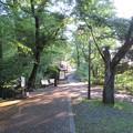Photos: 大野城/亀山公園休憩所(大野市)