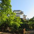 Photos: 大野城本丸(大野市)お福池