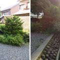 Photos: 大野城/柳廼社(大野市)厩池