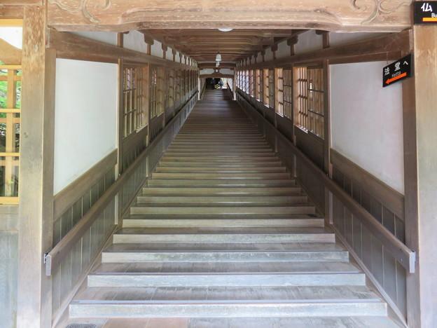 永平寺(福井県吉田郡永平寺町)