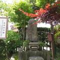 自性院(福井市)お市乃方碑