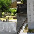 Photos: 橋本左内墓(福井市営 左内公園)