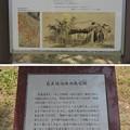 Photos: 芭蕉宿泊地洞哉宅跡(福井市営 左内公園)