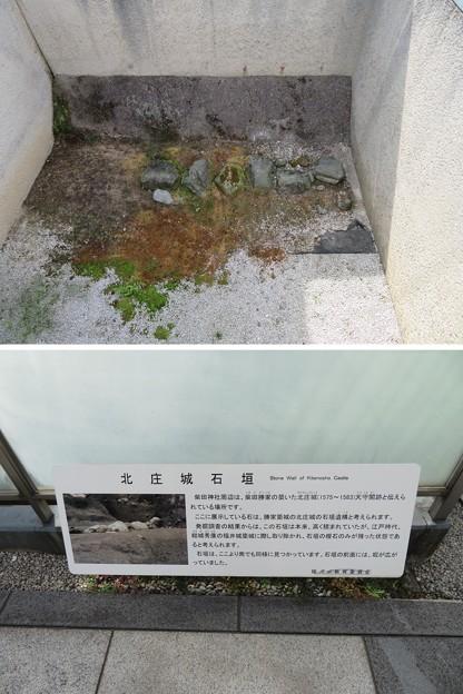 北ノ庄城跡/柴田神社(福井市)堀跡・石垣