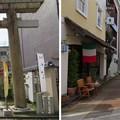 Photos: 北ノ庄城跡/柴田神社(福井市)鳥居・参道