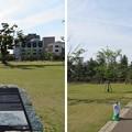 Photos: 福井城(福井市)二の丸? 山里丸?