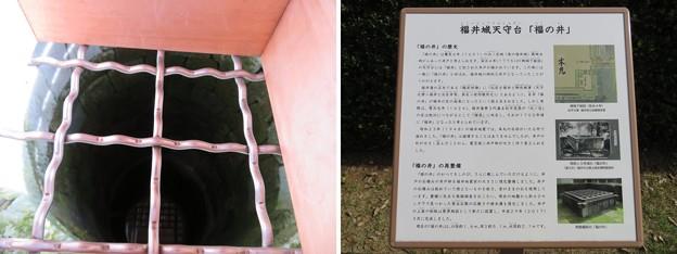 福井城(福井市)天守台跡 福の井