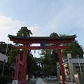 Photos: 劔神社(福井県越前町)大鳥居