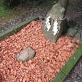 劔神社(越前町)かわらけ投げ