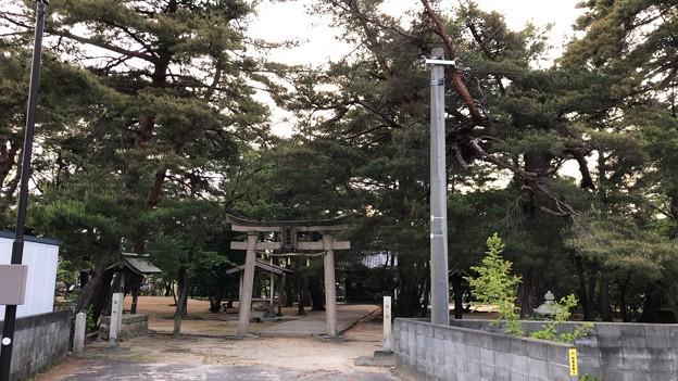 松原神社(福井県敦賀市)