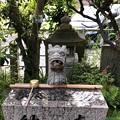 Photos: 晴明神社(敦賀市)