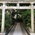 Photos: 氣比神宮(敦賀市)猿田彦神社