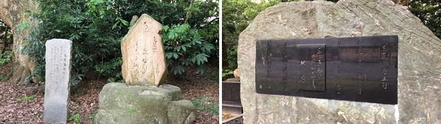 氣比神宮(敦賀市)芭蕉句碑