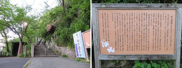 Photos: 金ヶ崎城(敦賀市)登城路
