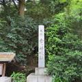 金ヶ崎城(敦賀市)金ヶ崎城址碑