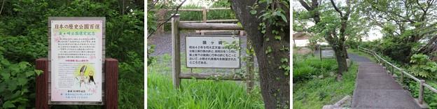 金ヶ崎城(敦賀市)鴎ヶ崎