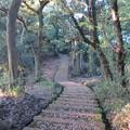 金ヶ崎城(敦賀市)三の木戸跡