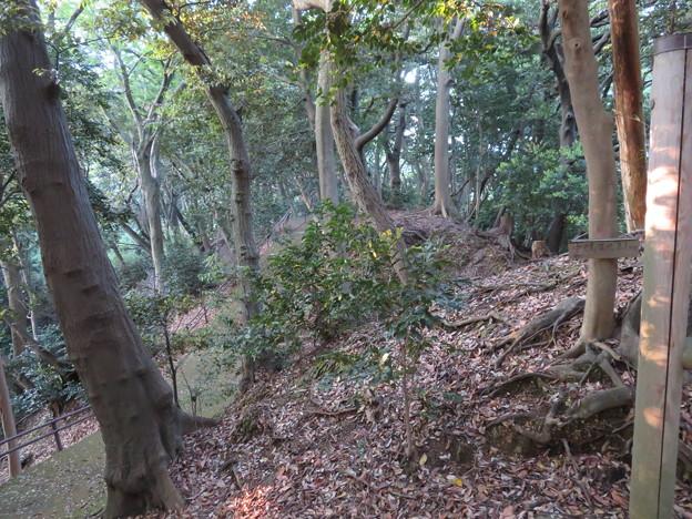 金ヶ崎城(敦賀市)二の木戸跡 ・郭