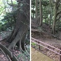 金ヶ崎城(敦賀市)一の木戸跡