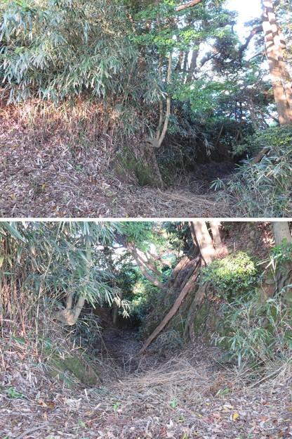 Photos: 天筒山城(敦賀市)堀切