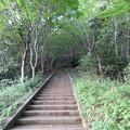 Photos: 天筒山城(敦賀市)