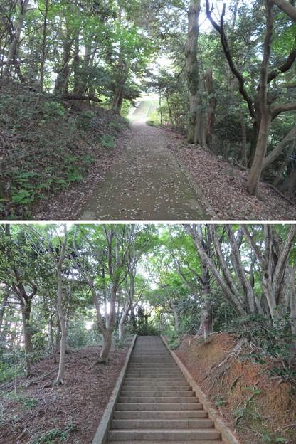 Photos: 天筒山城(敦賀市)郭