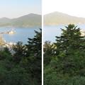 Photos: 天筒山城(敦賀市)見張台跡より
