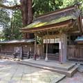若狭姫神社(若狭彦神社下社。小浜市遠敷)神門
